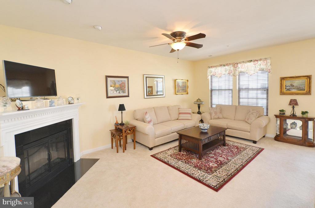 Spacious Family Room with Fireplace - 21627 ROMANS DR, ASHBURN