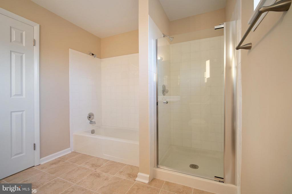Bath (Master) - 11509 AMHERST AVE #201, SILVER SPRING
