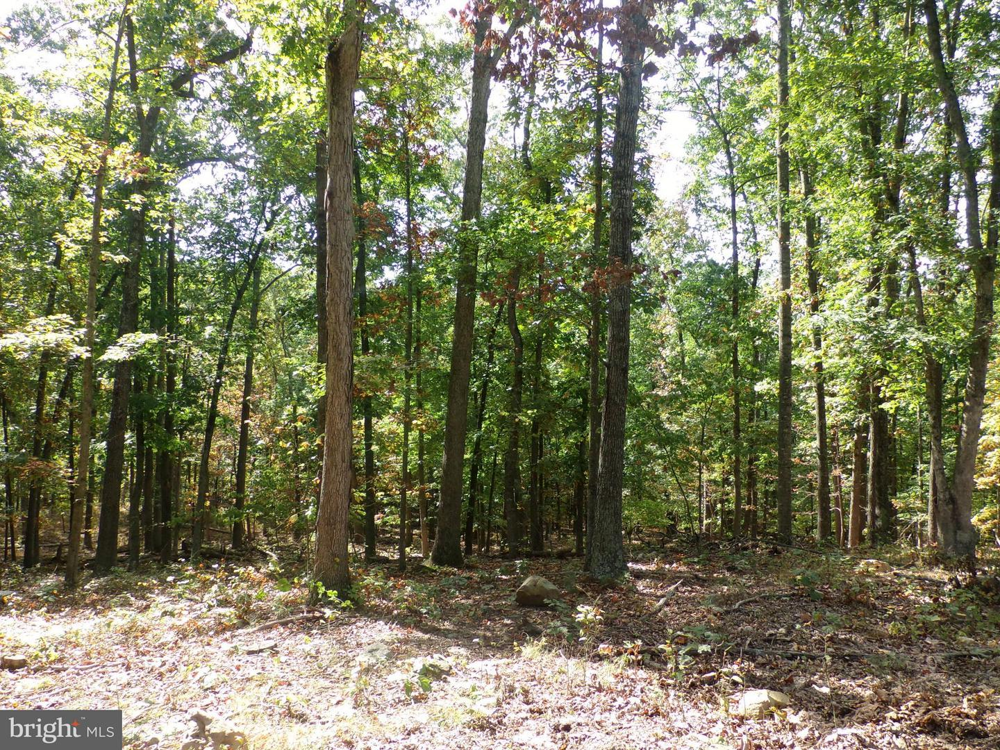 Land for Sale at Smith Creek Rd New Market, Virginia 22844 United States