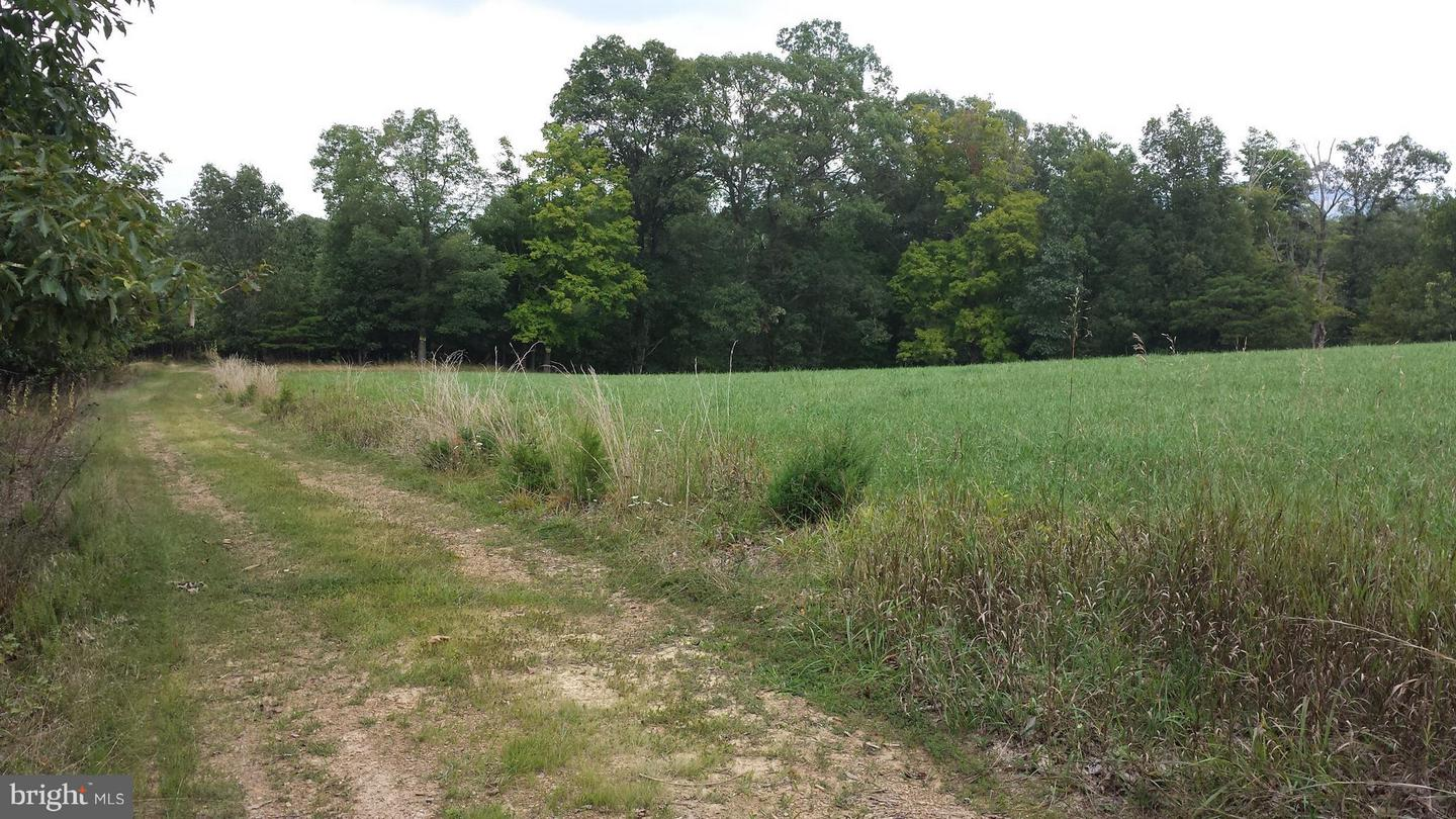 Land for Sale at Rilla Smith Road Purgitsville, West Virginia 26852 United States