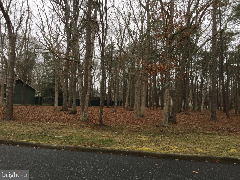 Частный односемейный дом для того Продажа на 38 ACORN Lane Cape May Court House, Нью-Джерси 08210 Соединенные Штаты