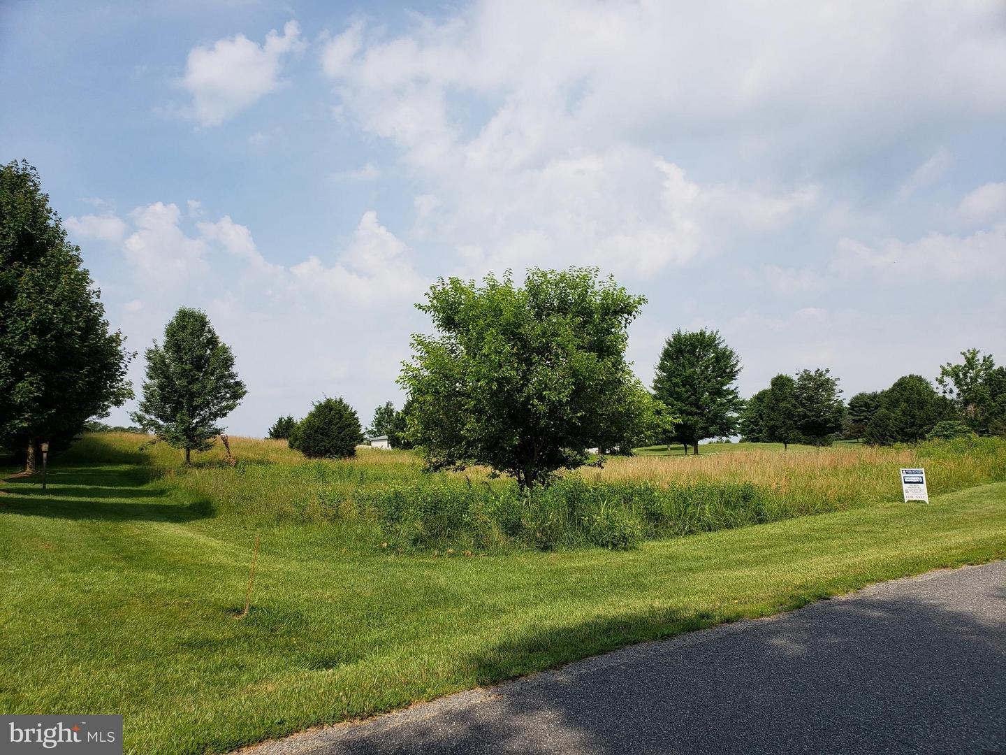 Land for Sale at Lot 8a Clear Back Rd Front Royal, Virginia 22630 United States
