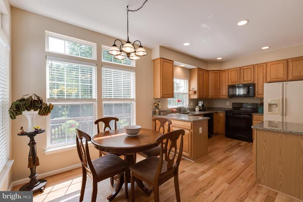 Eat-in kitchen offers outdoor views - 19101 ABBEY MANOR DR, BROOKEVILLE