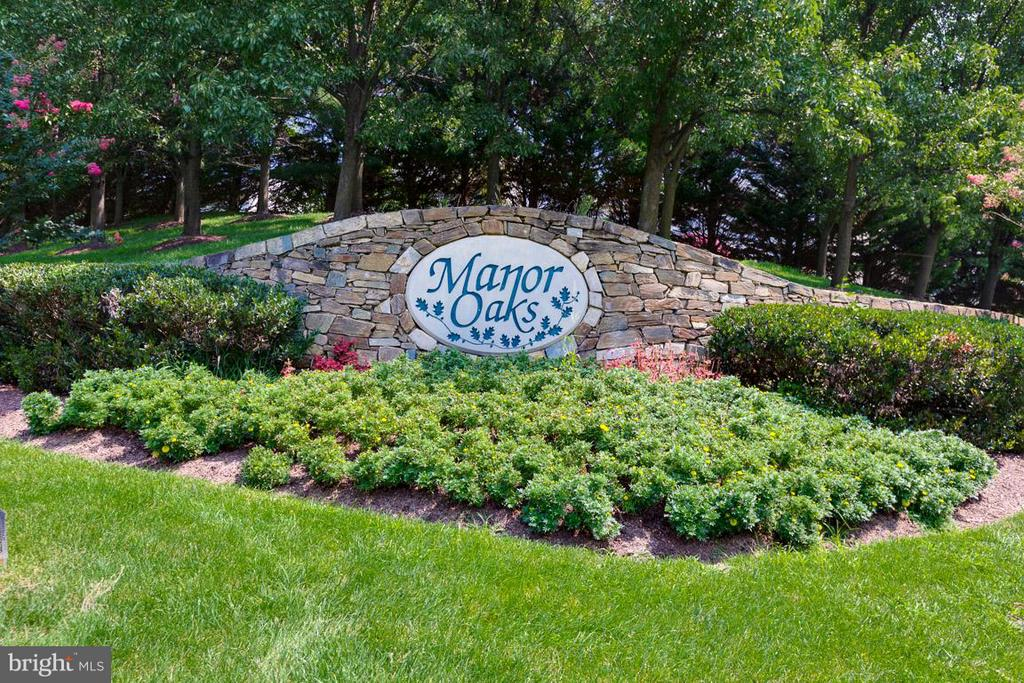 Community Entrance - 19101 ABBEY MANOR DR, BROOKEVILLE