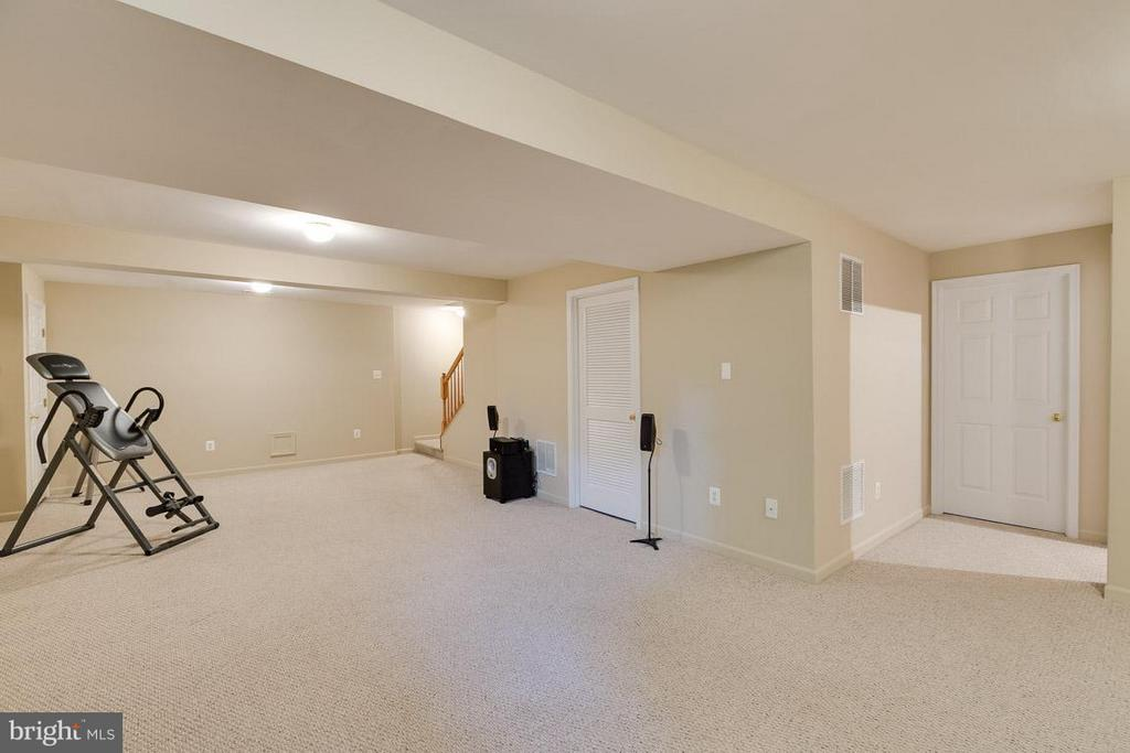 Lower level w/ rough-in for bath - 19101 ABBEY MANOR DR, BROOKEVILLE