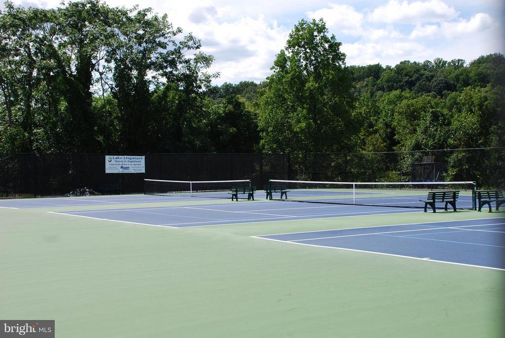 Tennis! - QUICK MOVE IN MOZART, NEW MARKET