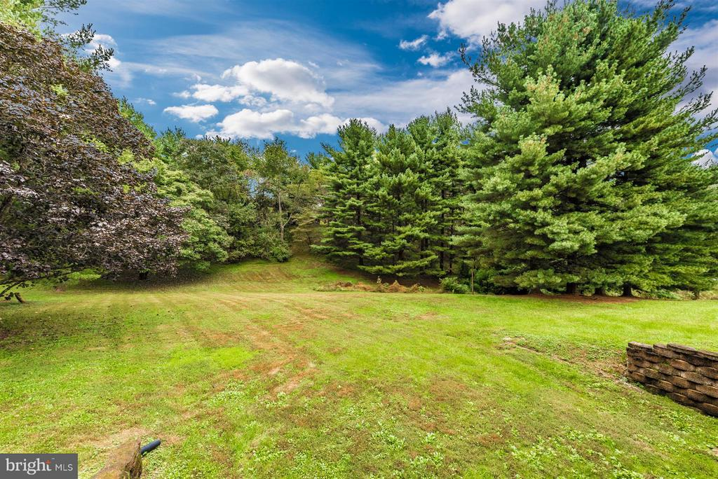 Beautiful mature trees! - 12403 HILL CT, MOUNT AIRY