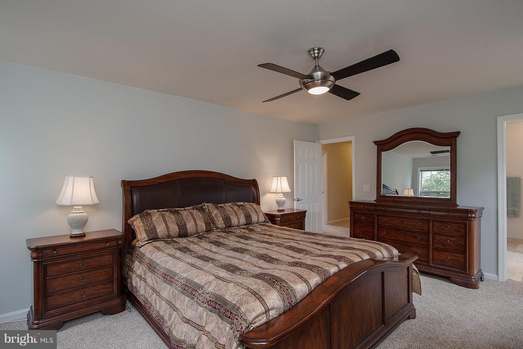Bedroom (Master) - 31 WESTBROOK LN, STAFFORD