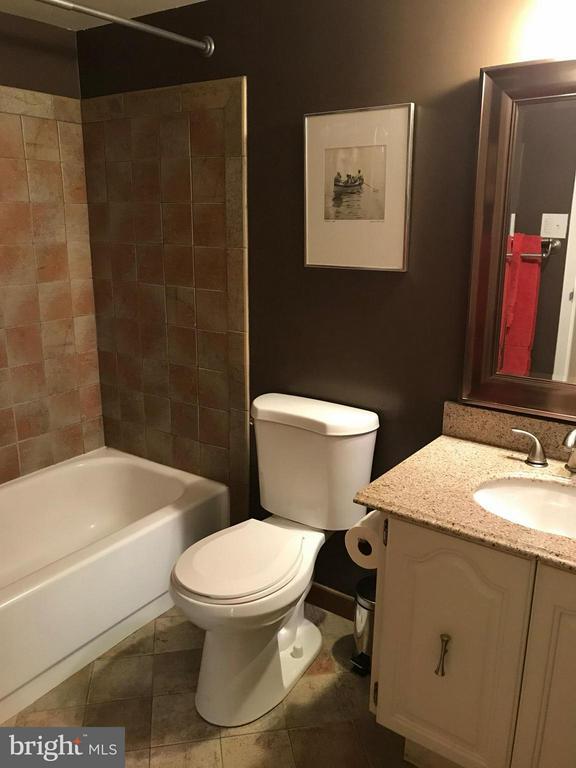 Bath - 5300 HOLMES RUN PKWY #1216, ALEXANDRIA