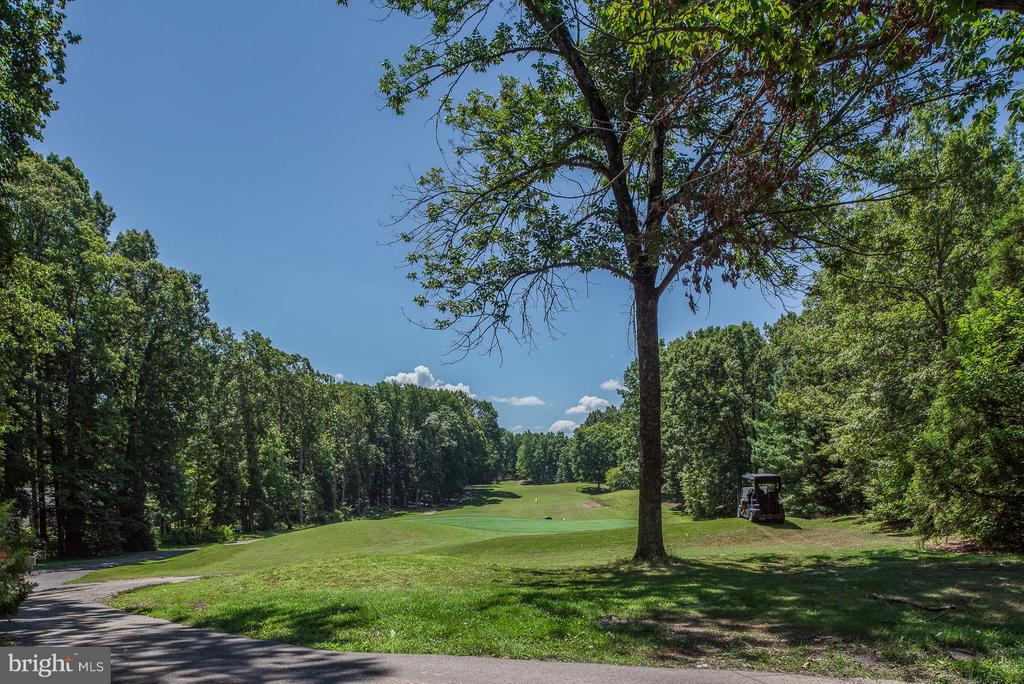 Golf Course - 217 BATTLEFIELD RD, LOCUST GROVE