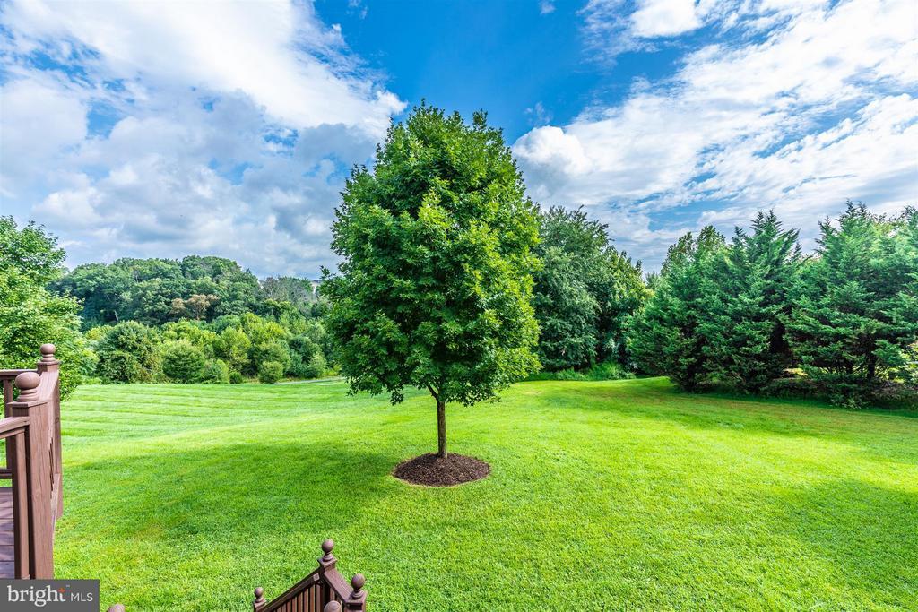 Gorgeous Yard - Peaceful Setting - 5580 BROADMOOR TER N, IJAMSVILLE