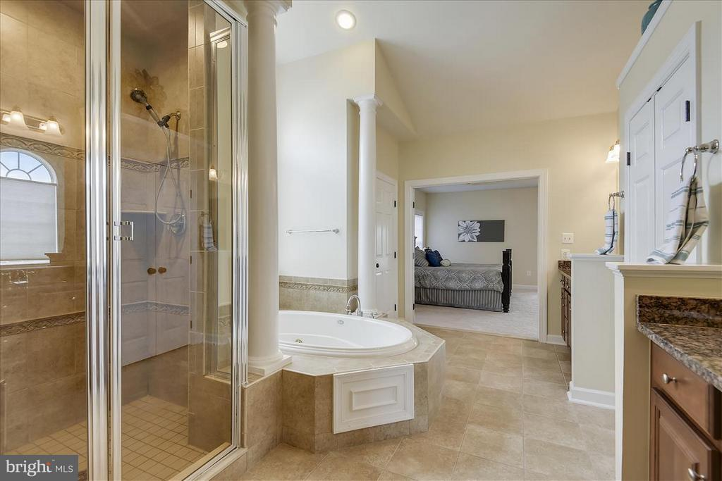 Master Bedroom with separate shower and large tub - 4026 BELGRAVE CIR, FREDERICK