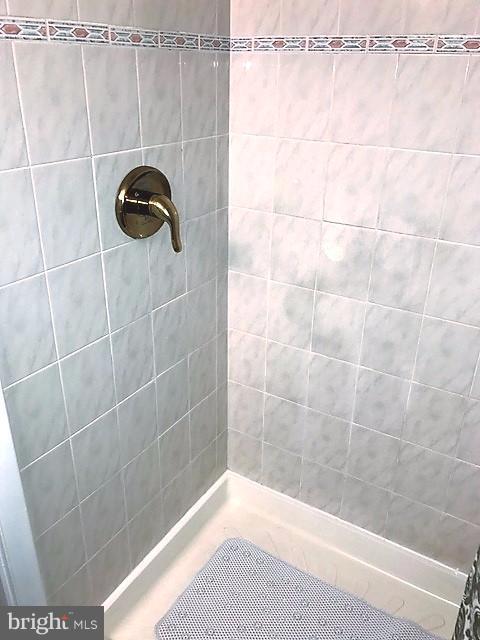 Bath (Master) Shower View 1 - 9808 47TH PL #304, COLLEGE PARK