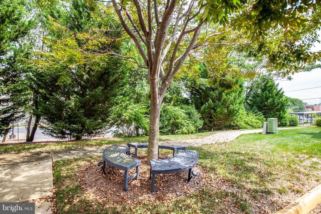 Community Walking path and sitting area - 513 DUNMORE ST, FREDERICKSBURG
