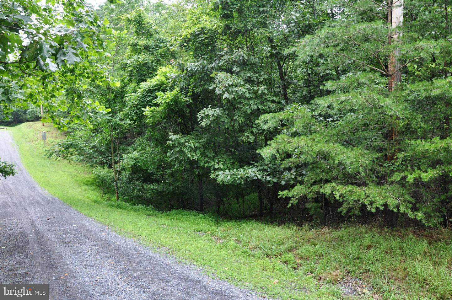 Land for Sale at 0-L-111 Blackberry Ln Gore, Virginia 22637 United States
