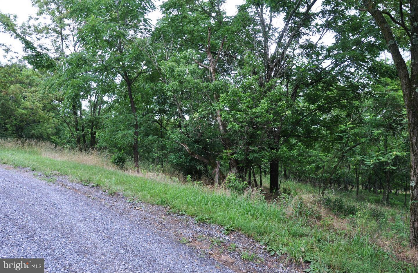 Land for Sale at L-65 Sawmill Dr Gore, Virginia 22637 United States