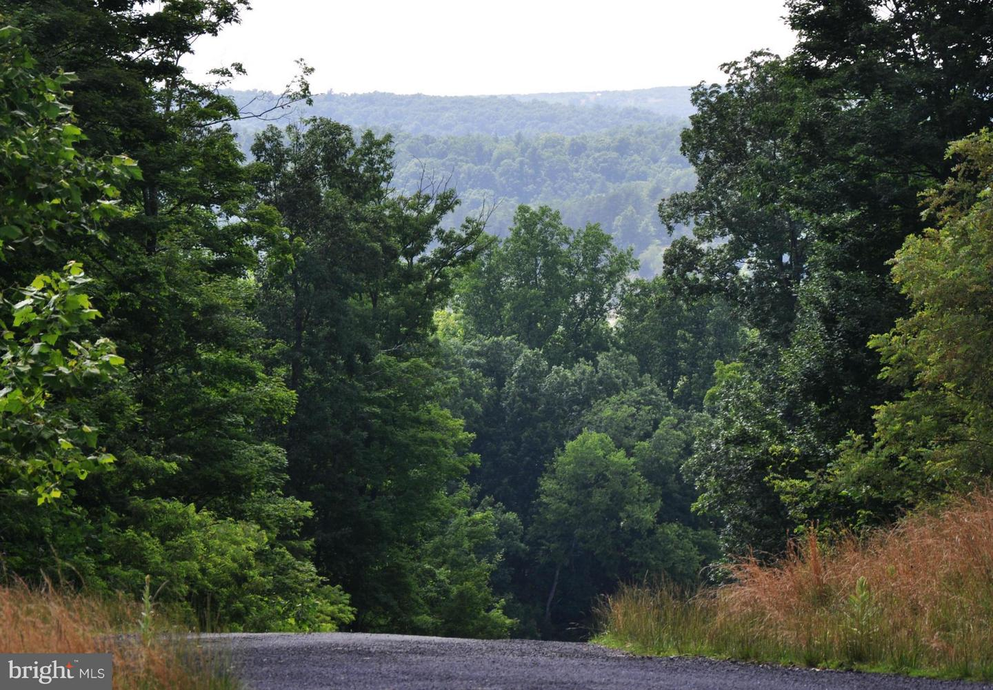 Land for Sale at 5 Willa Cather Ln Gore, Virginia 22637 United States