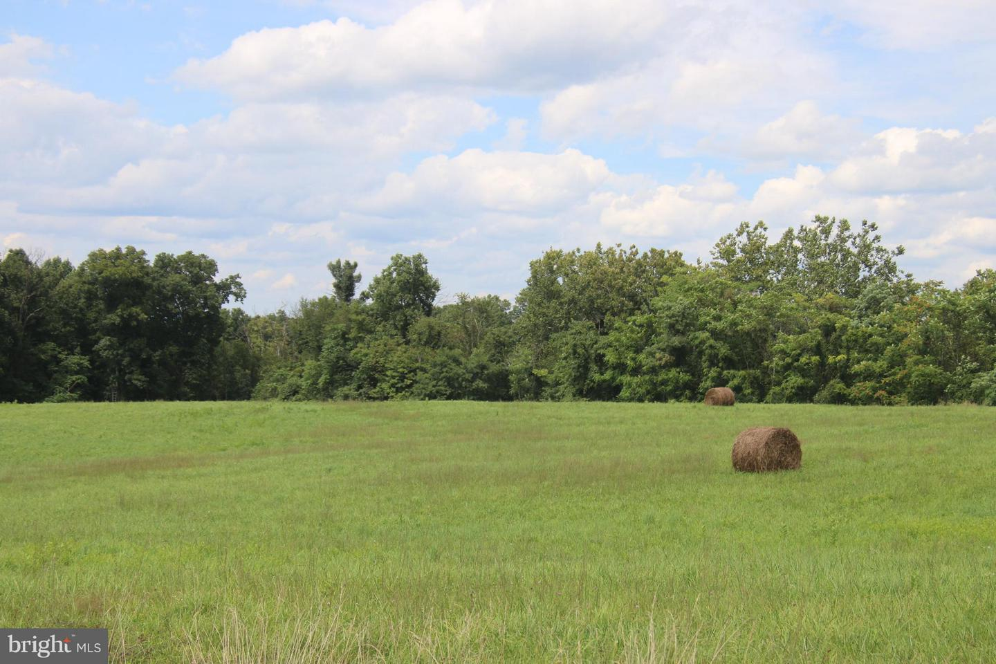 Land for Sale at Quail Hill Drive High View, West Virginia 26808 United States