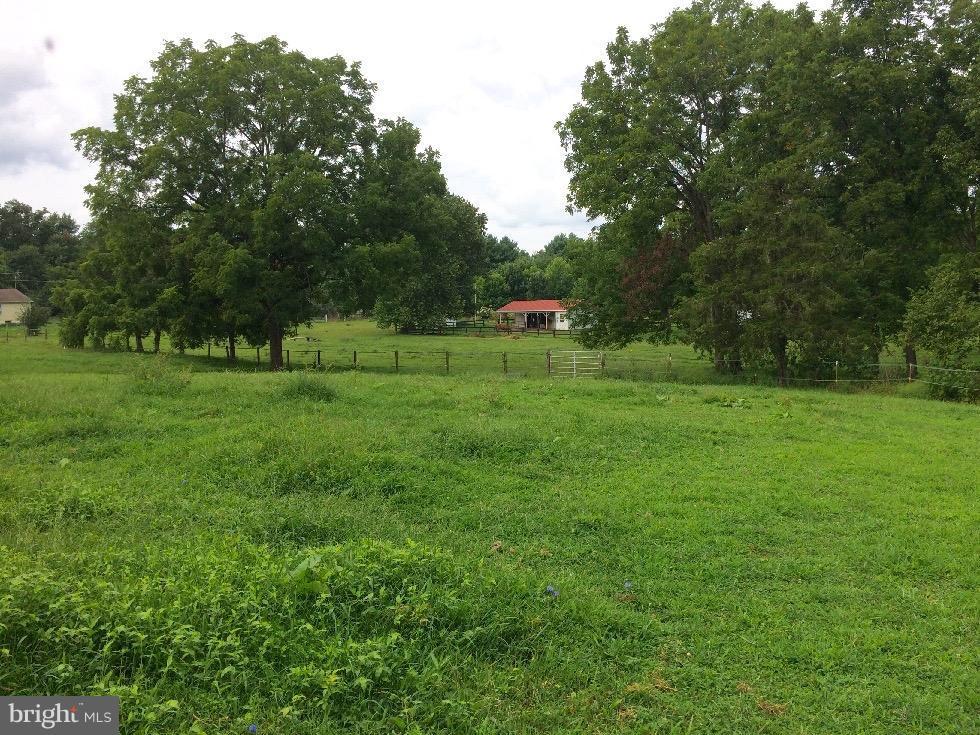 Lush Pasture - 1577 SHENANDOAH RIVER LANE, BOYCE