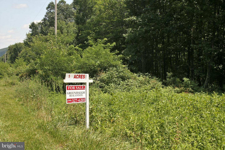 土地,用地 为 销售 在 Star Tannery, 弗吉尼亚州 22654 美国