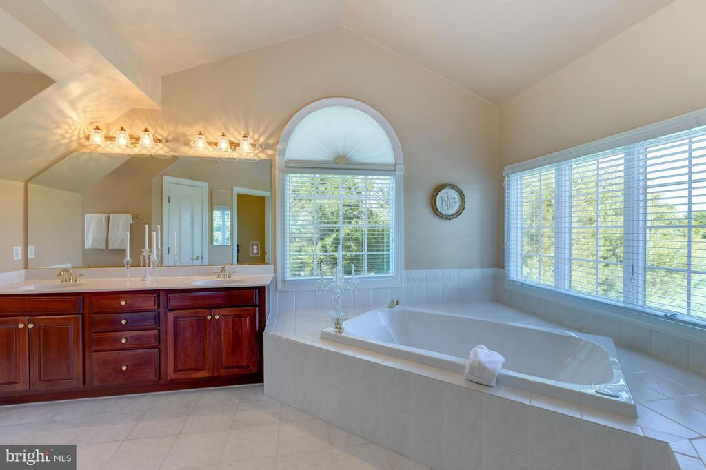 Master Bath with Gorgeous Views - 41605 SWIFTWATER DR, LEESBURG