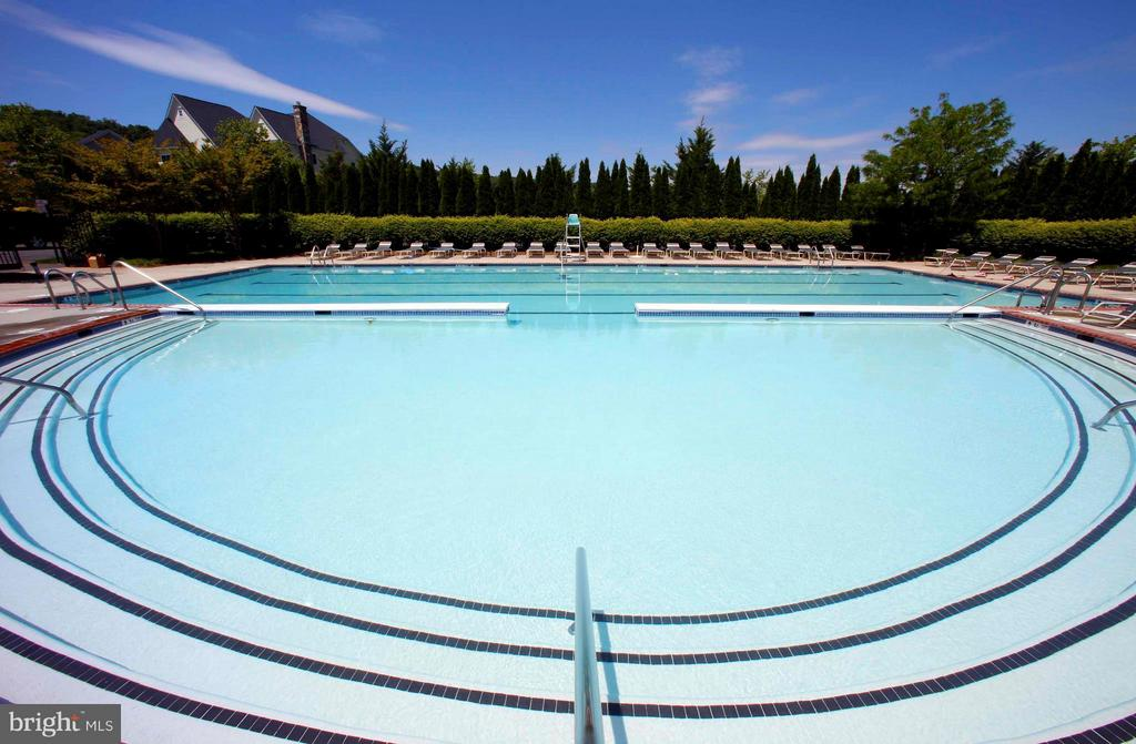 Community Swimming Pool - 41605 SWIFTWATER DR, LEESBURG