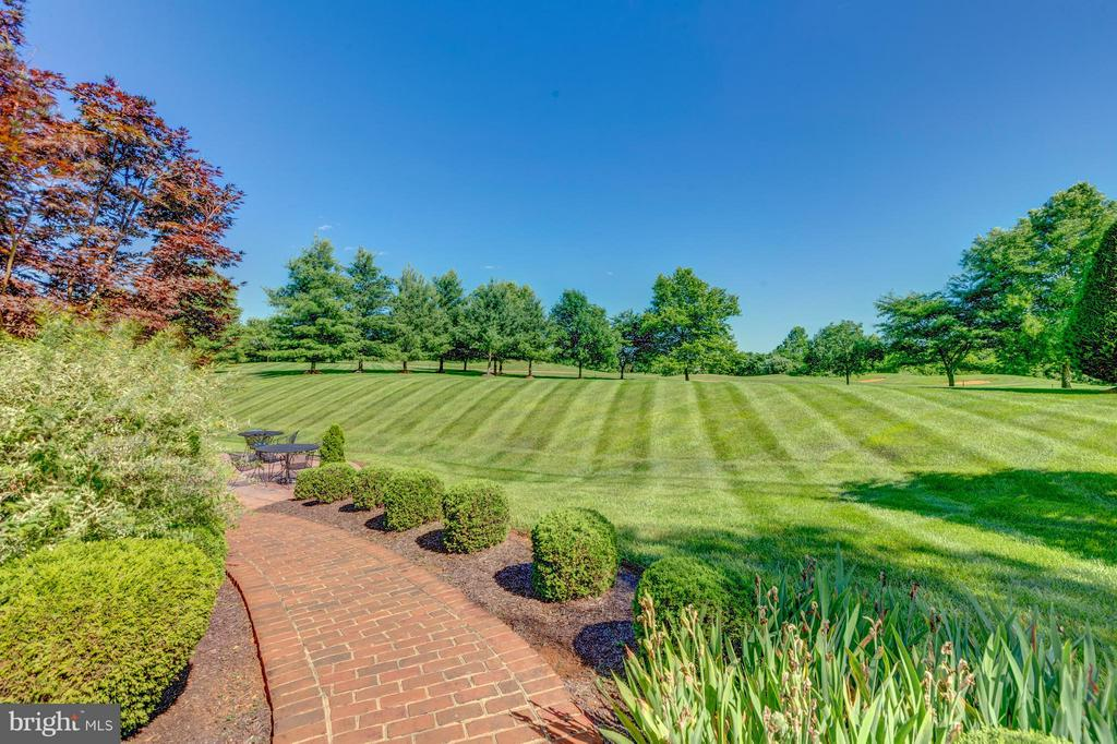 Lush landscaping - 41605 SWIFTWATER DR, LEESBURG