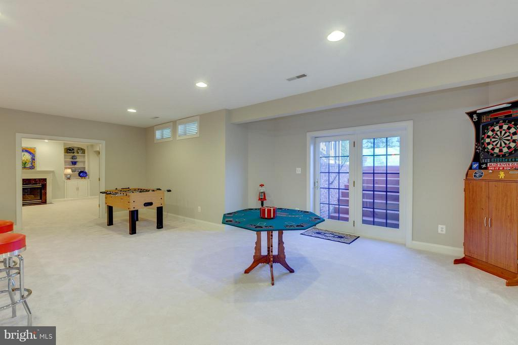 Lower Level Recreation Room - 41605 SWIFTWATER DR, LEESBURG