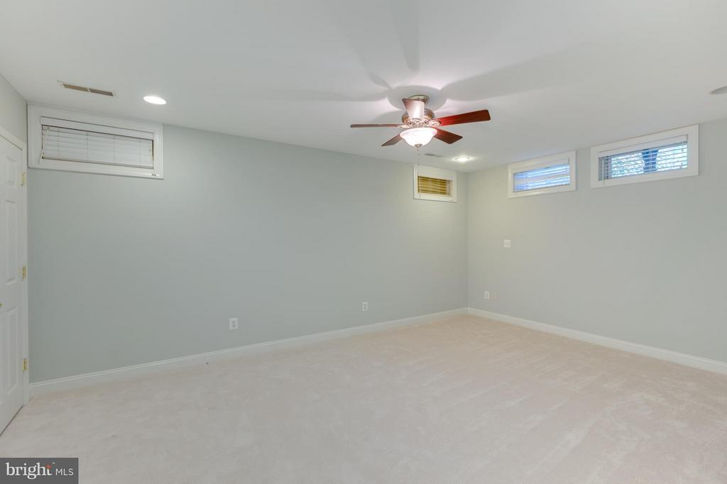 Lower Level Bonus Room with Closet and Full Bath - 41605 SWIFTWATER DR, LEESBURG