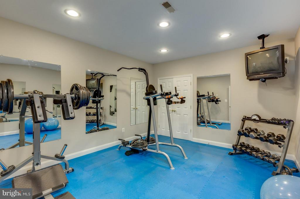 Lower Level Exercise Room - 41605 SWIFTWATER DR, LEESBURG