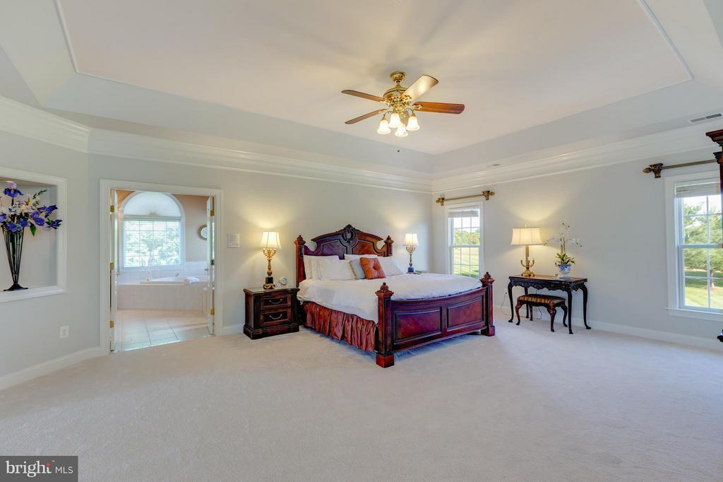Large Master Bedroom - 41605 SWIFTWATER DR, LEESBURG
