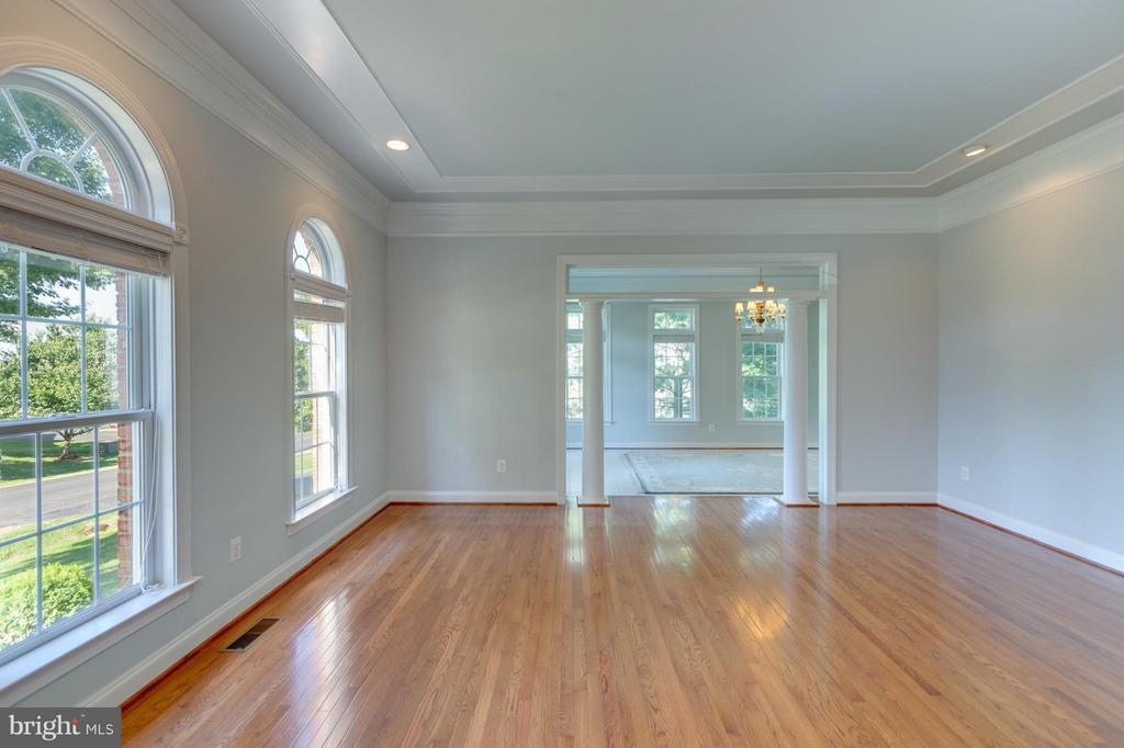 Large Living Room with Over-sized Windows - 41605 SWIFTWATER DR, LEESBURG