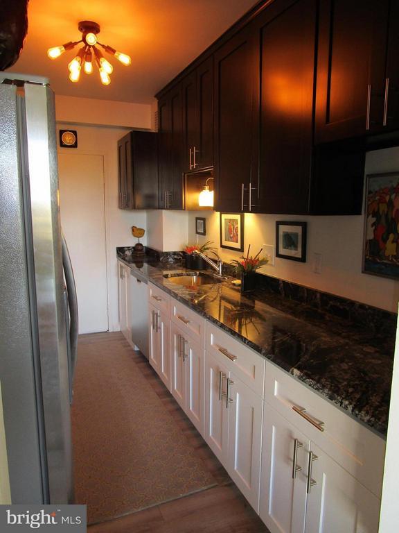 All New Granite/Stainless Designer Kitchen - 3900 WATSON PL NW #A-5E, WASHINGTON