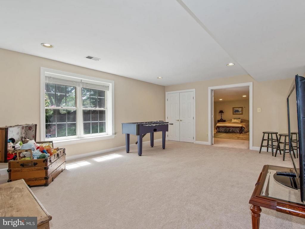 Lower Level Optional Bedroom #6 - 11109 TOMMYE LN, RESTON
