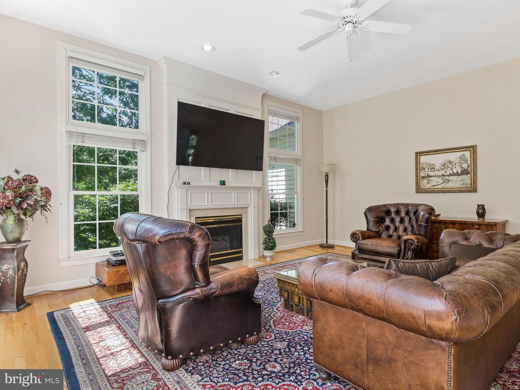 Family Room - 11109 TOMMYE LN, RESTON