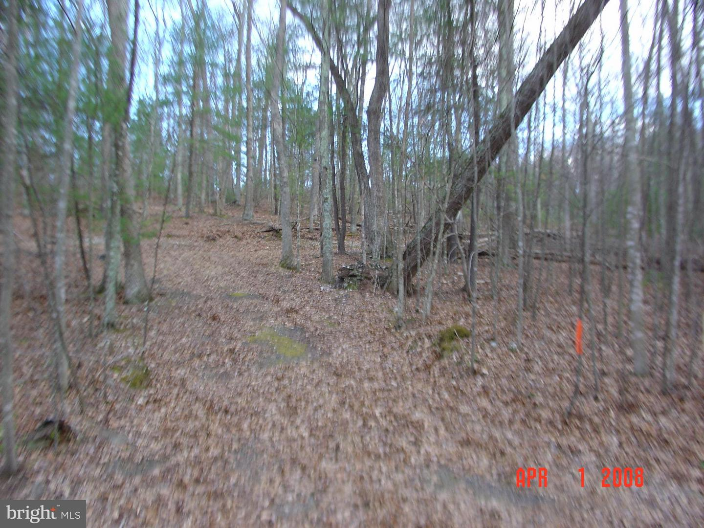 Land for Sale at Trout Stream Road Lost City, West Virginia 26810 United States