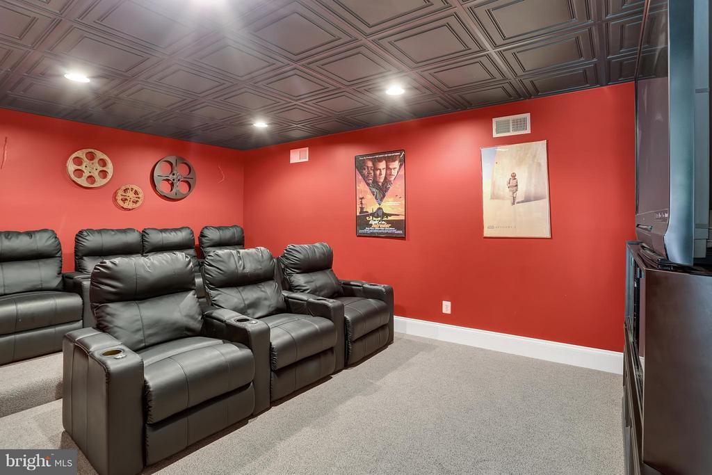 Theater Room - 22915 COBB HOUSE RD, MIDDLEBURG