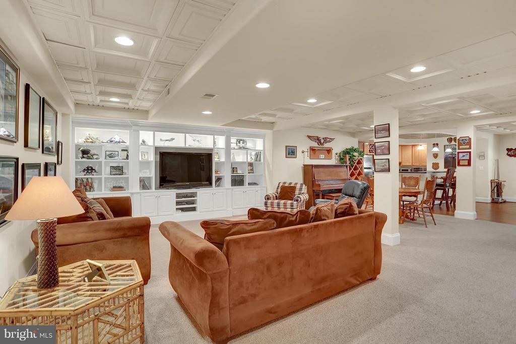 Lower Level Family Room - 22915 COBB HOUSE RD, MIDDLEBURG