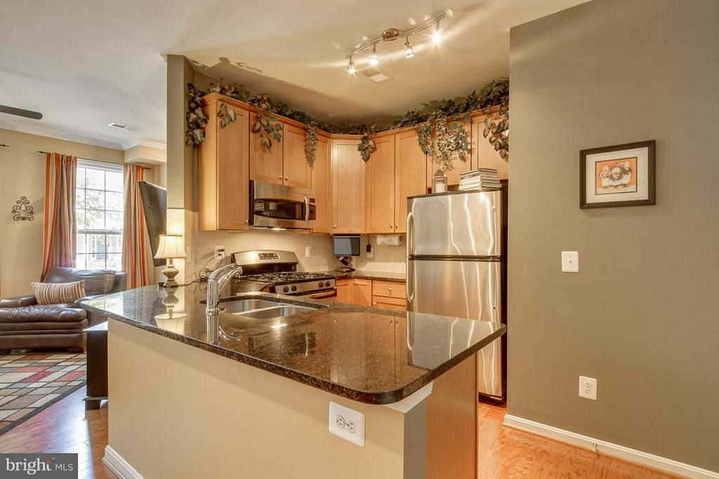 Kitchen - 19306 DIAMOND LAKE DR, LEESBURG