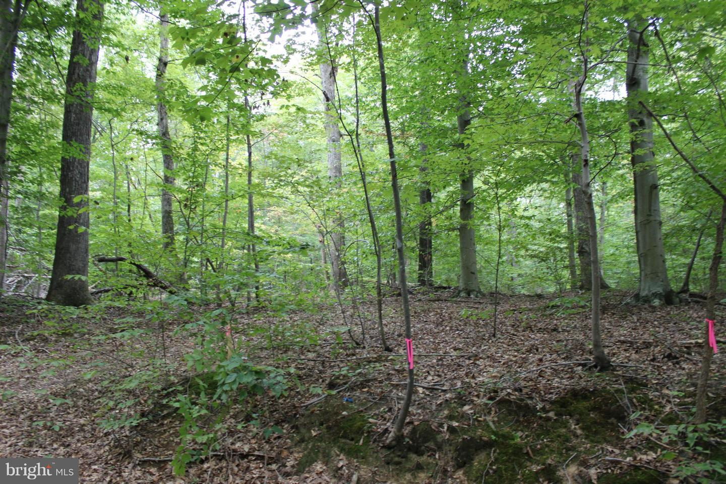 Additional photo for property listing at 16701 Boot Hill Rd  Accokeek, Maryland 20607 United States