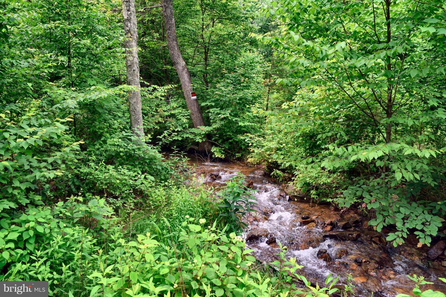 Land for Sale at Bear Ridge Rd Yellow Spring, West Virginia 26865 United States