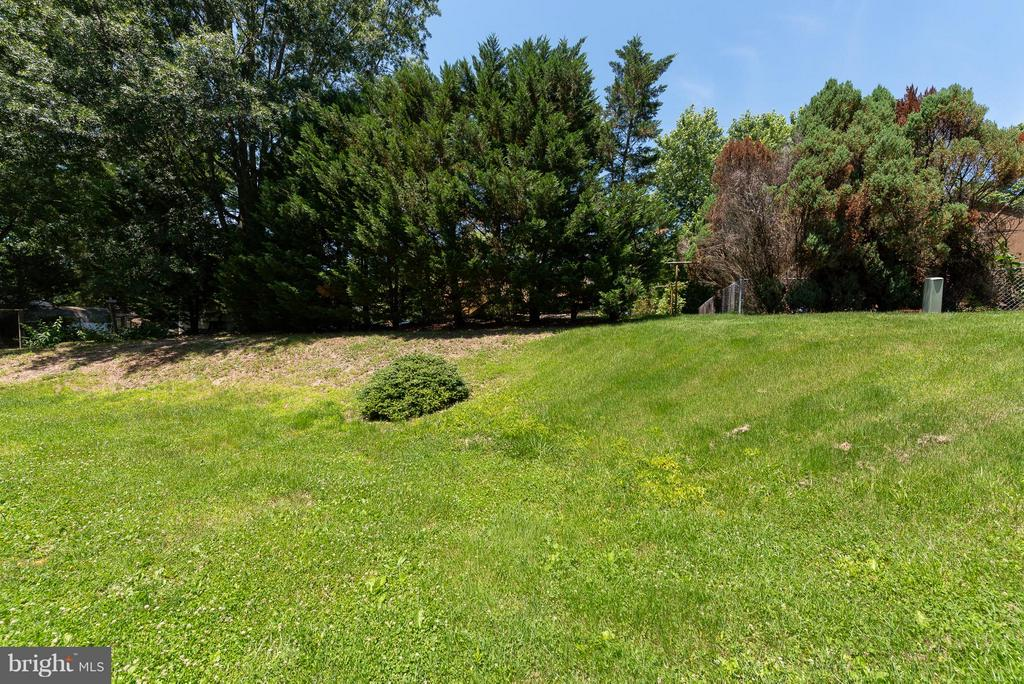 Gently Sloped Backyard - 317 BURMAN LN, FREDERICKSBURG