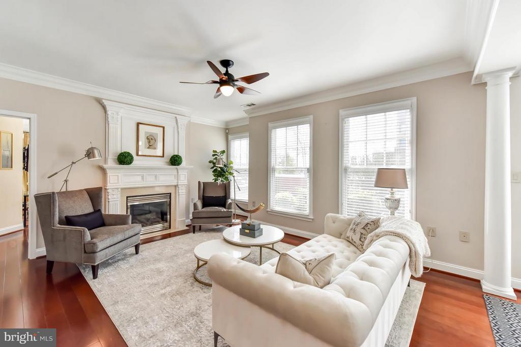 High ceilings & beautiful moldings - 1115 CAMERON ST #405, ALEXANDRIA