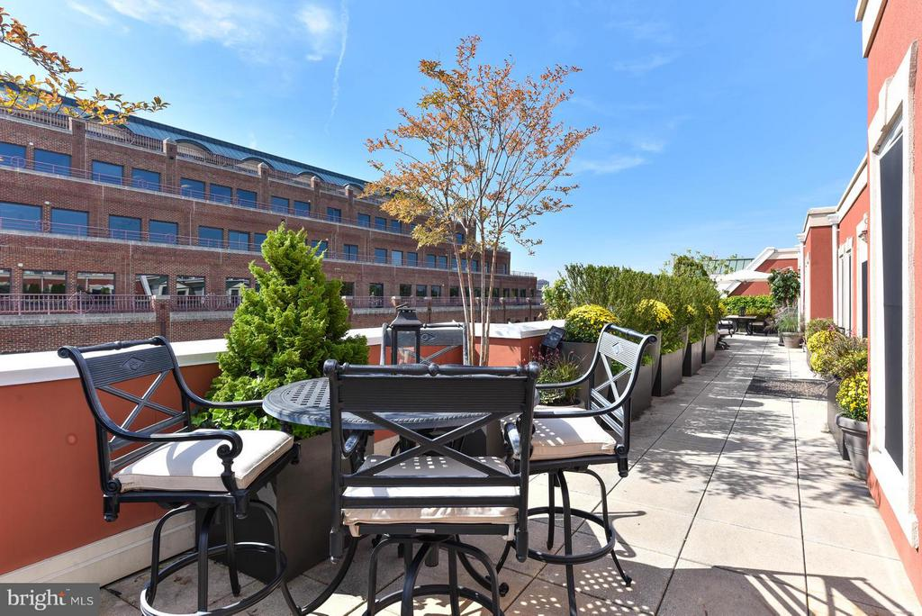 Dining al fresco at its finest - 1115 CAMERON ST #405, ALEXANDRIA