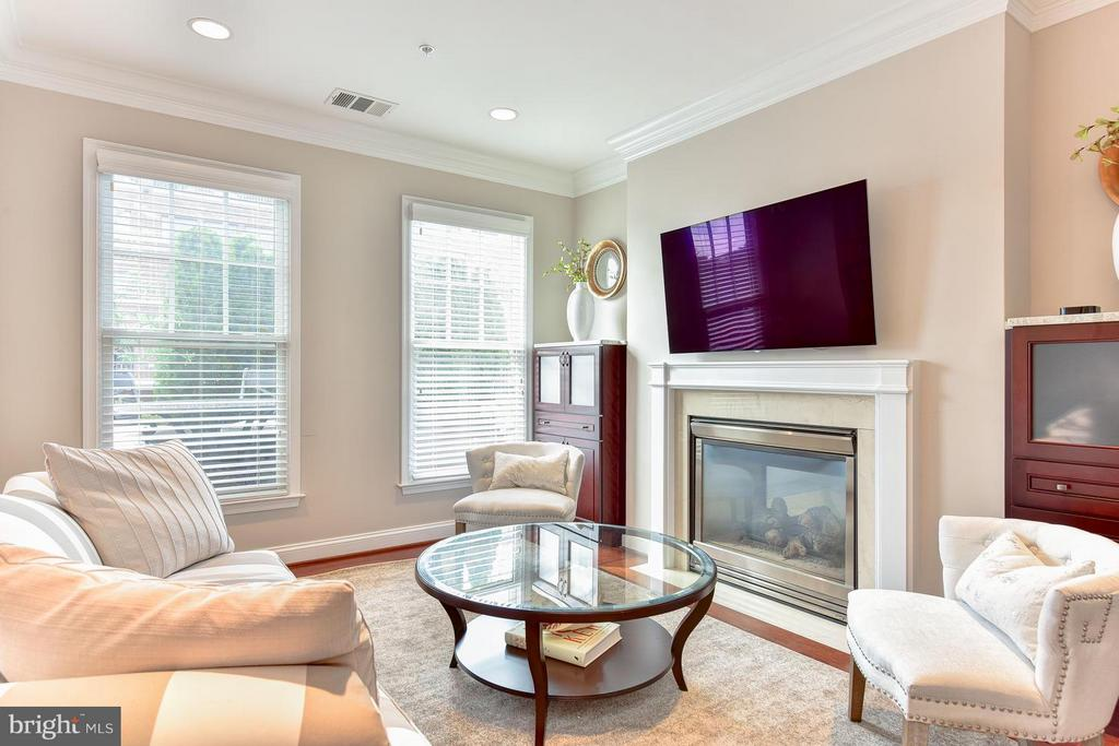 Family room w/ gas fireplace - 1115 CAMERON ST #405, ALEXANDRIA