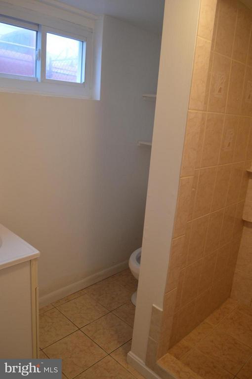Lower level full bath with renovated shower - 4206 31ST ST, MOUNT RAINIER