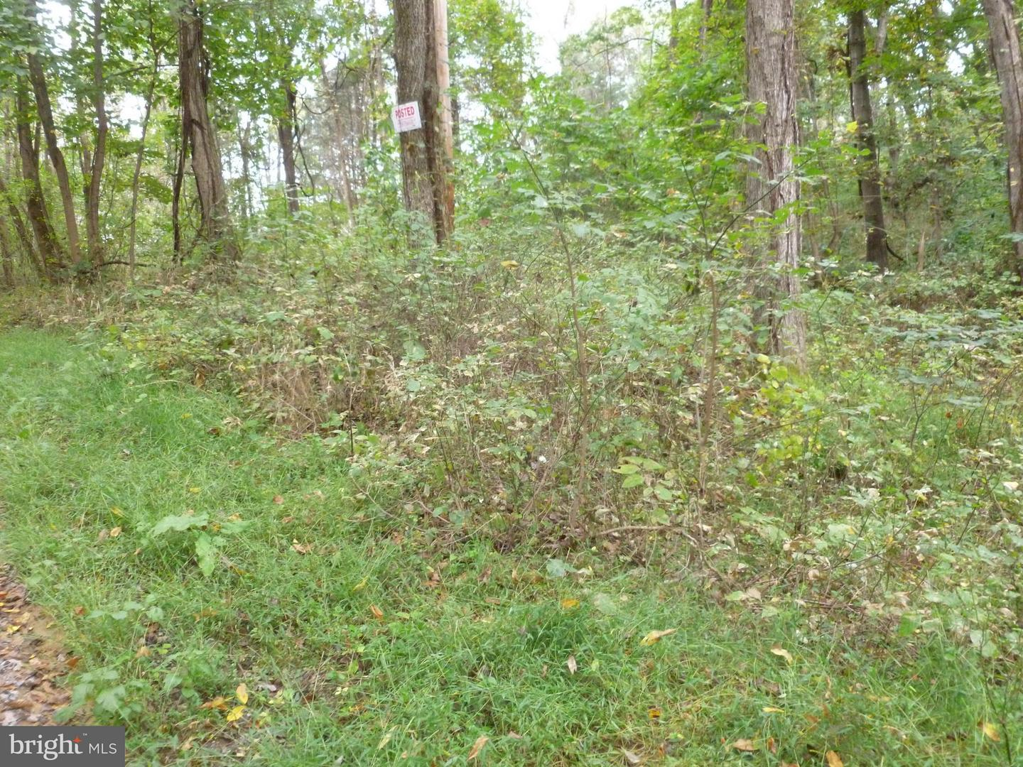 Land for Sale at Harris Dr Front Royal, Virginia 22630 United States