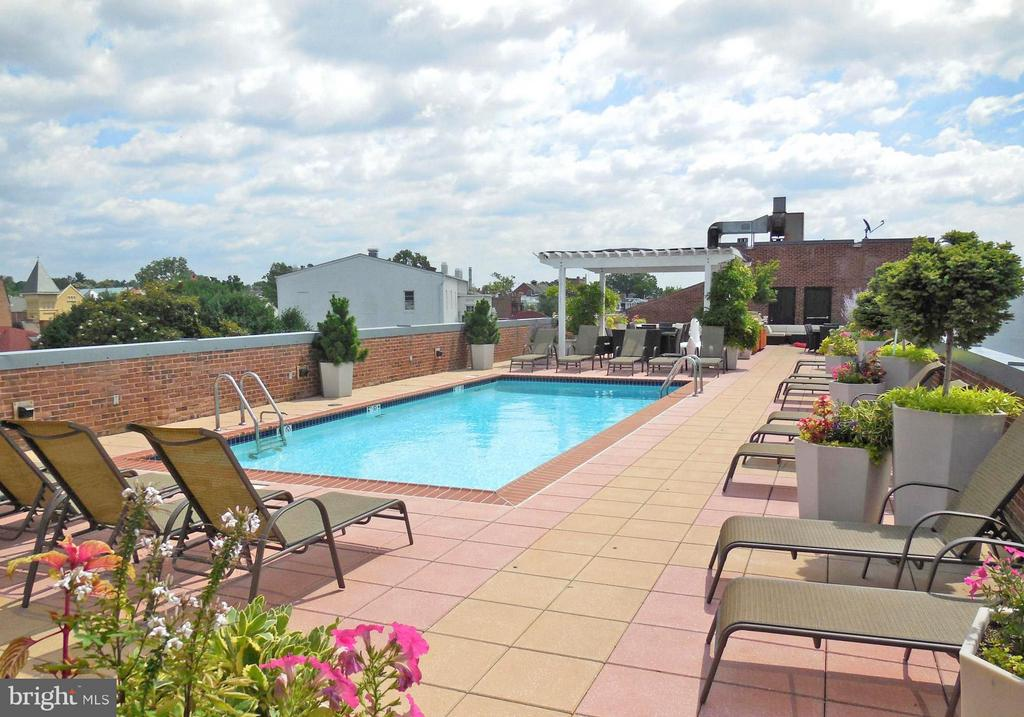 Roof deck with pool and gas grill - 3251 PROSPECT ST NW #412, WASHINGTON