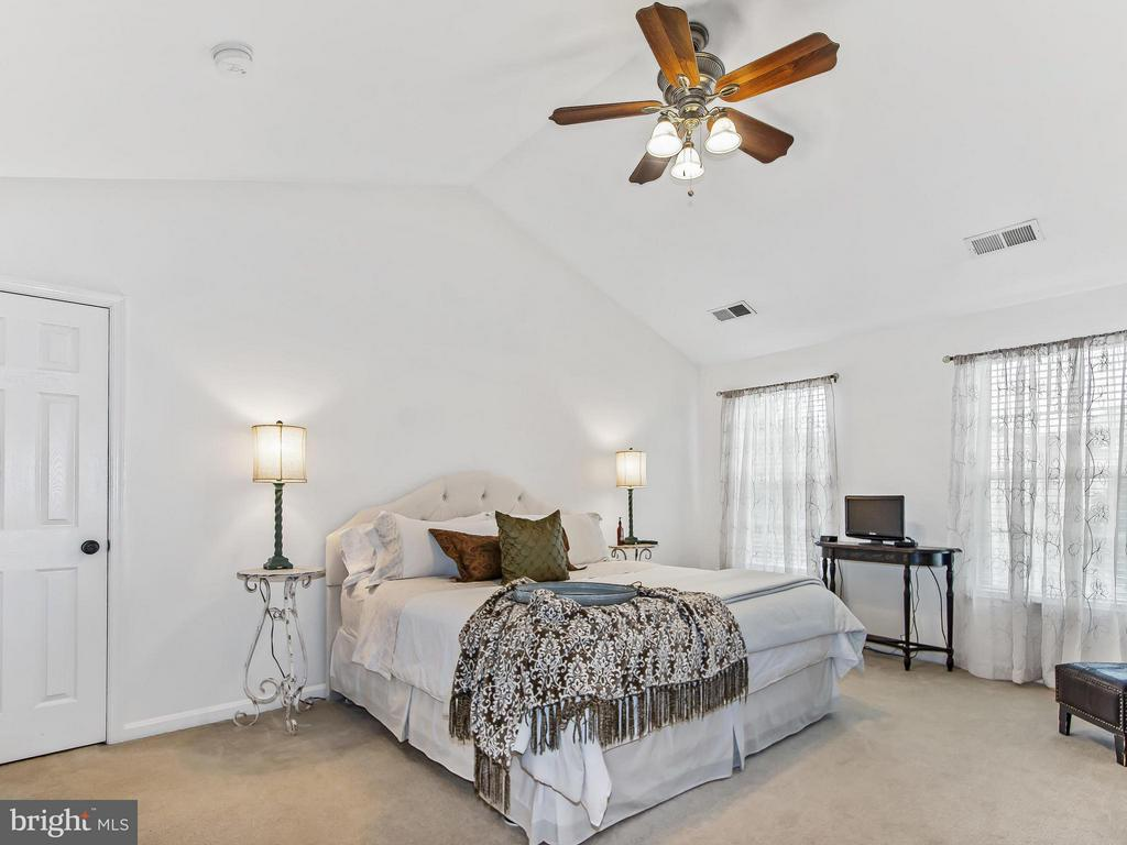 Bedroom (Master) - 17209 MAGIC MOUNTAIN DR, ROUND HILL