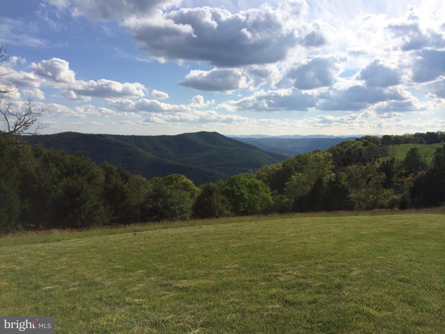 Land for Sale at 95 Grace Mountain Ln Milam, West Virginia 26838 United States